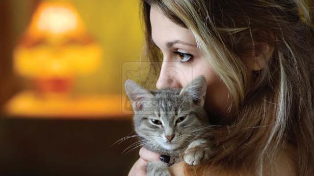 Közérzetjavító program macskáknak