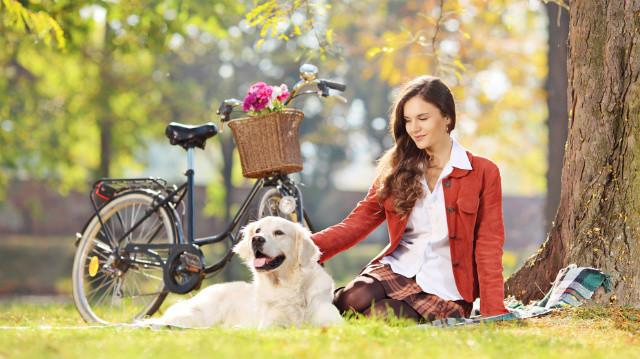 Kerékpározás kutyusunkkal