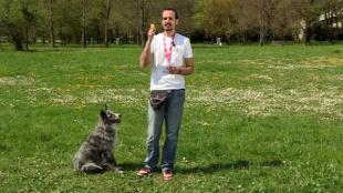 A kutya és a klikker
