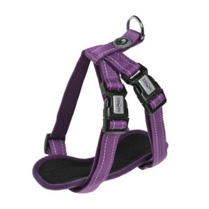 MORE FOR DOGS hám Allround neoprén lila L/78 cm