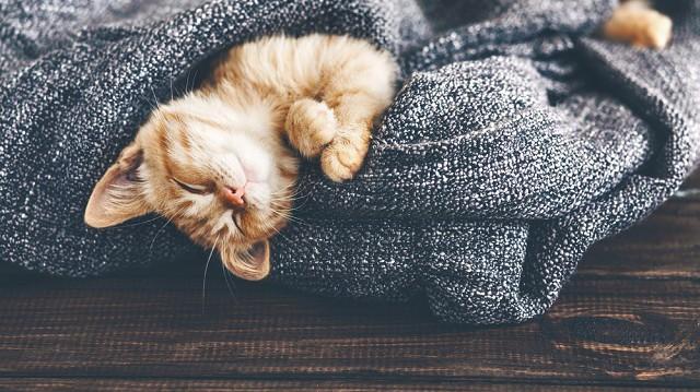 Így tegye kényelmesebbé lakását a nagy hidegben