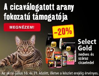 SG macska