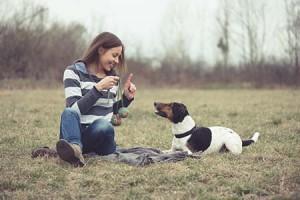 A kutyák akár 150 szót és parancsot…
