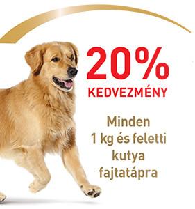 20% kedvezmény – MINDEN ROYAL CANIN kutya fajtatápra (1 kg-tól)