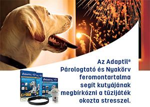 20% kedvezmény – FELIWAY/ADAPTIL nyugtató termékek kutyáknak és macskáknak