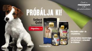 Select Gold: kutyusának tervezve!