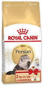 A HÓNAP FAJTÁJA ajándék kiszereléssel – Royal Canin Perzsa Adult 4kg/Kitten 2kg