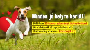 Állati segítség: 35 tonna adomány gyűlt össze!