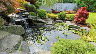 Jaj de jó, kerti tó! Íme, a legfontosabb tavaszi teendők!