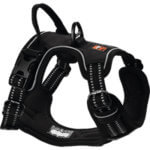 DogsCreek kutyahám Active fekete 69-81cm