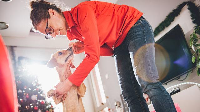 Kit neveljünk először? A vendégeinket, vagy kutyusunkat?