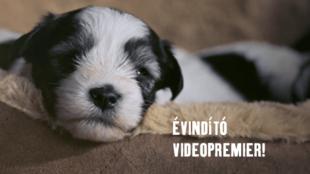 Fressnapf Videopremier