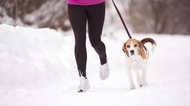 Téli sportok kedvenceinkkel