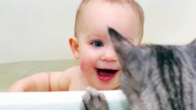 Kisbaba és kiscica barátság – mire figyeljünk