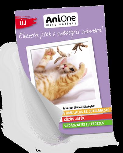 AniOne: Élvezetes játék a szobatigris számára!