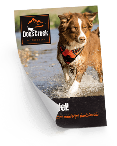 Dogs Creek: Kalandra fel!