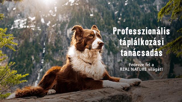 Ismét professzionális tanácsadói napok a Fressnapfnál