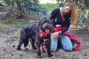 gazdikereső kutyus, Buksi