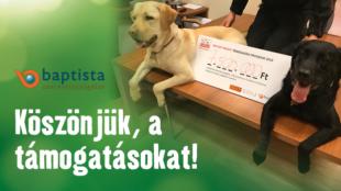 Karácsonyi segítség: 7,5 millió forintot sikerült összegyűjteni