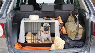 A tökéletes szállítóbox kiválasztása közös nyaraláshoz