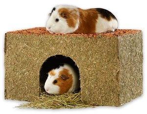 MultiFit kisemlős ház széna zöldséggel (több méret) Pl. S
