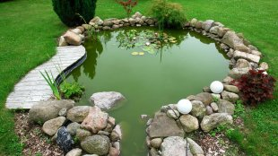 Kerti tó – felkészülés az őszre