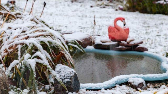 Befagyott a kerti tó! Mi ilyenkor a teendő?