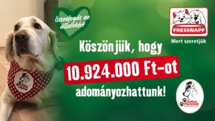 Több, mint 10 millió Ft-os adomány a Dr Mancsok Alapítvány számára