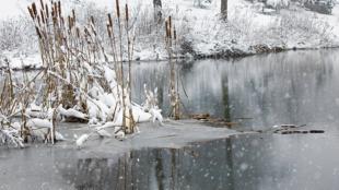 Kerti tó karbantartása télen